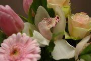 943940_flowers_4